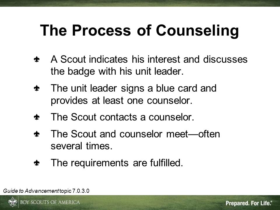 The Process of Counseling A Scout indicates his interest and discusses the badge with his unit leader.