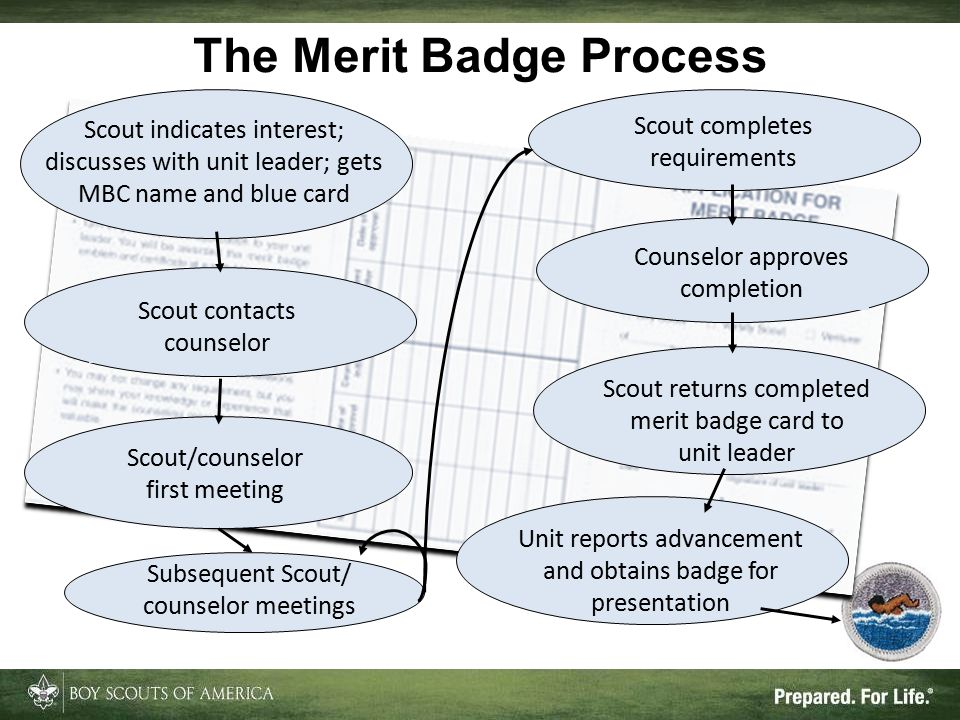 Subsequent Scout/ counselor meetings Scout returns completed merit badge card to unit leader Counselor approves completion Scout contacts counselor The Merit Badge Process Scout/counselor first meeting Scout indicates interest; discusses with unit leader; gets MBC name and blue card Scout completes requirements Unit reports advancement and obtains badge for presentation