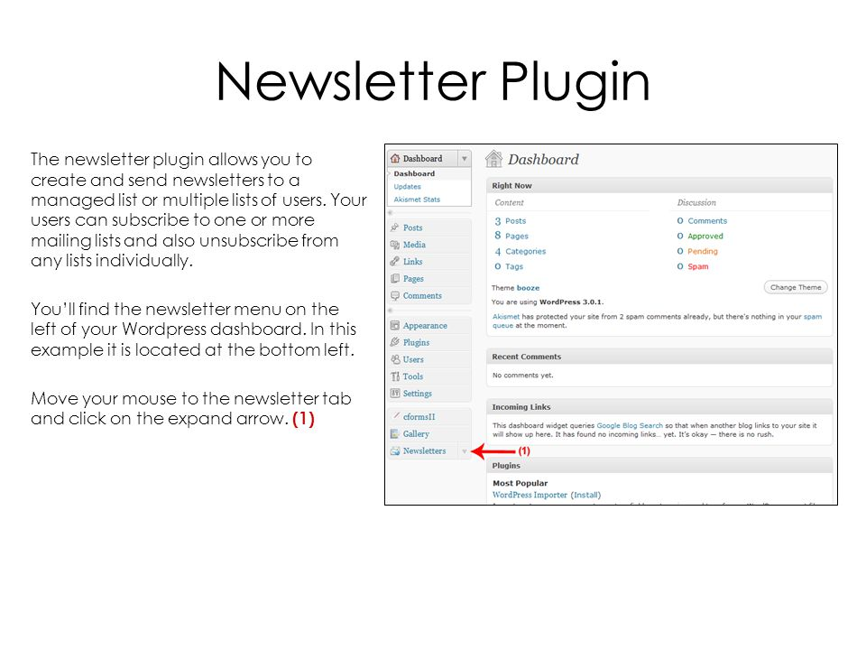Newsletter Plugin The newsletter plugin allows you to create and send newsletters to a managed list or multiple lists of users.