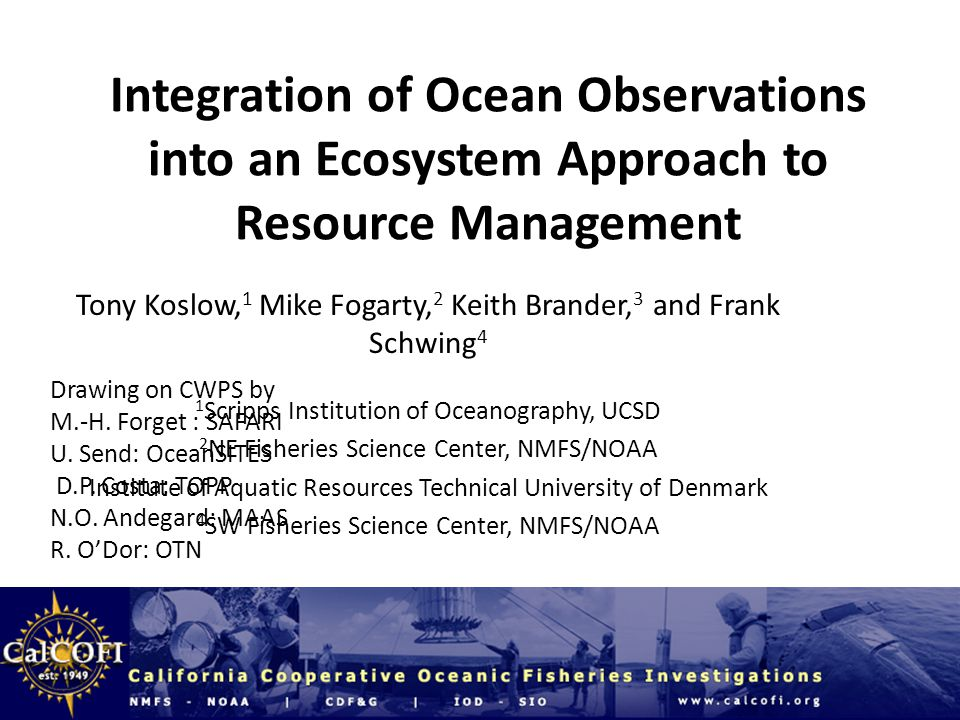 Integration of Ocean Observations into an Ecosystem Approach