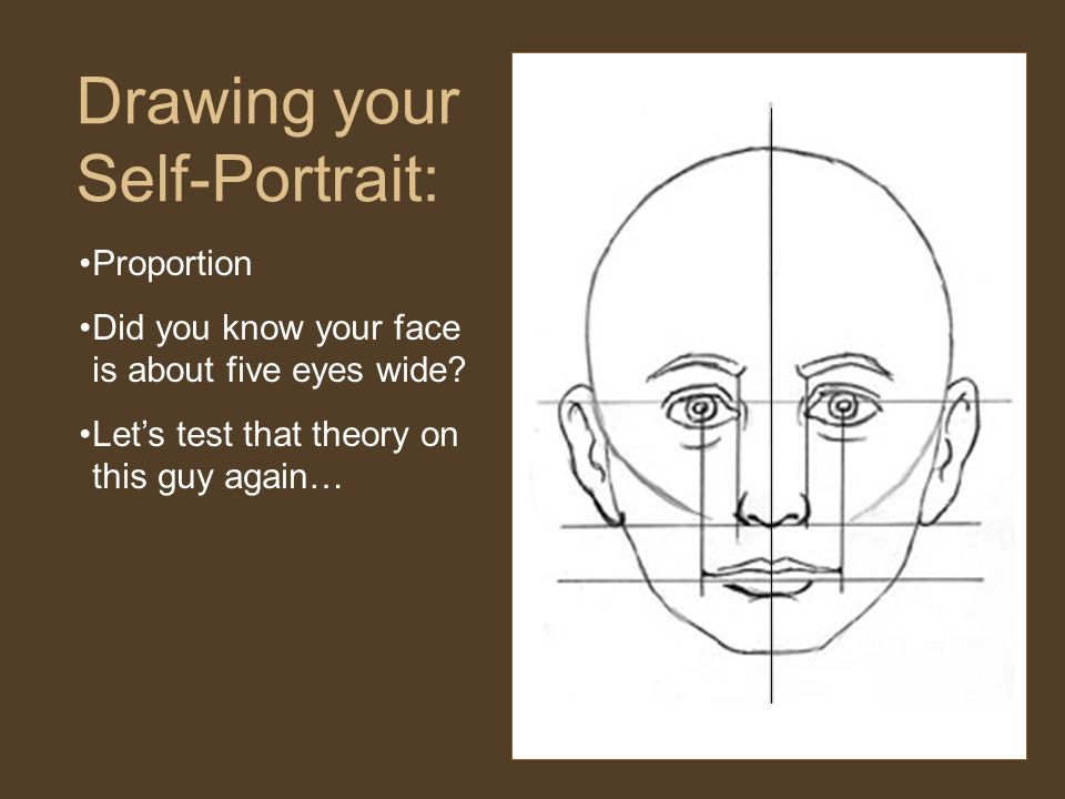 Proportion Did you know your face is about five eyes wide.