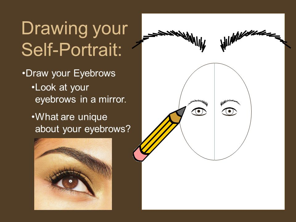 Draw your Eyebrows Drawing your Self-Portrait: Look at your eyebrows in a mirror.