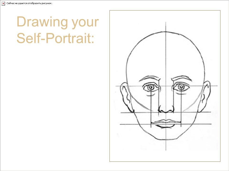 Nose and Proportion Drawing your Self-Portrait: The edges of your nose fall under the inside corners of your eyes.