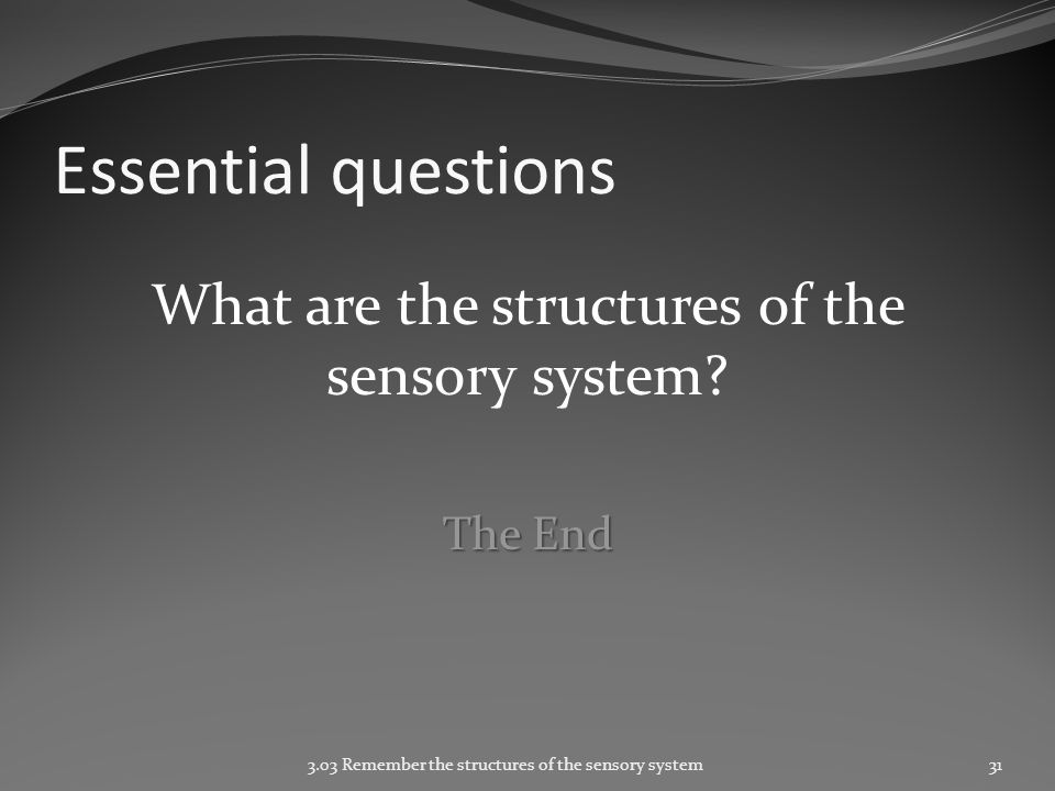 Essential questions What are the structures of the sensory system.