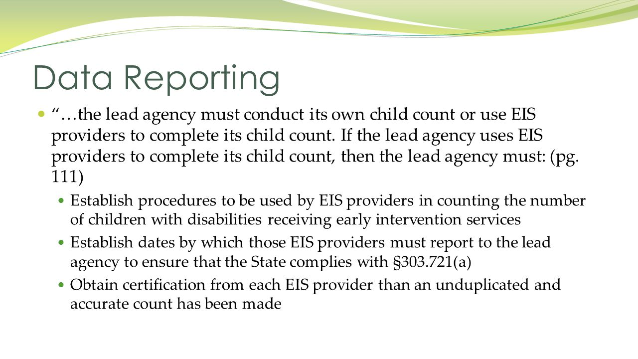 …the lead agency must conduct its own child count or use EIS providers to complete its child count.