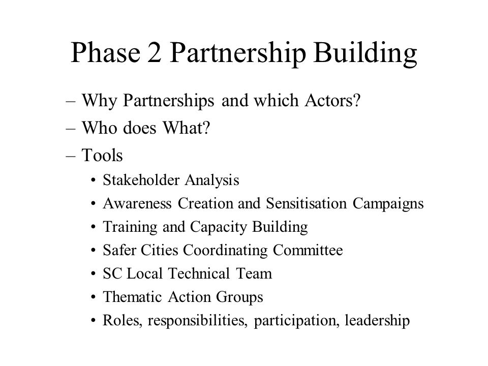 –Why Partnerships and which Actors. –Who does What.