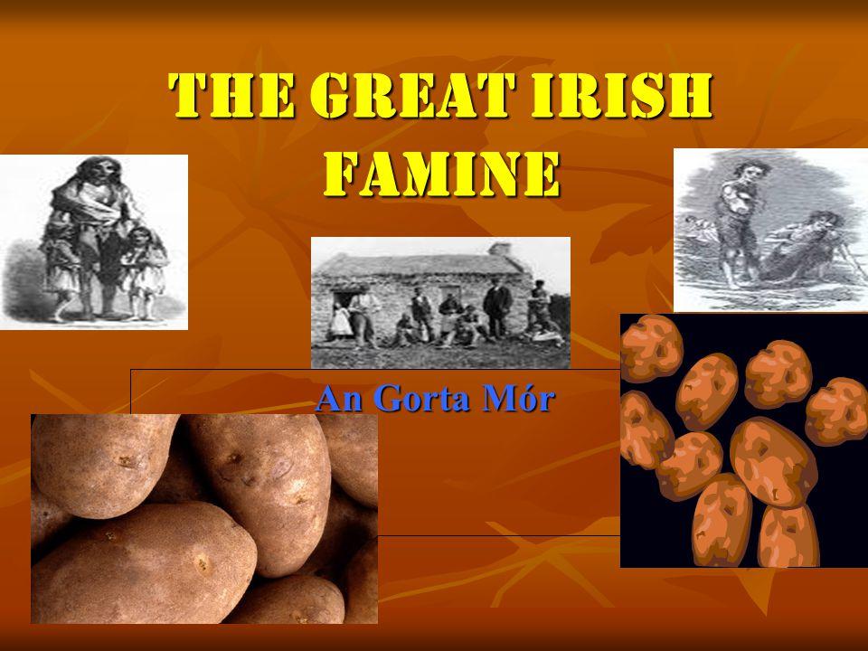 irish potato famine facts
