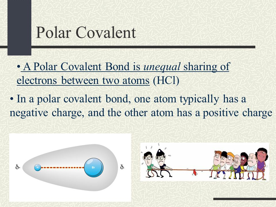 Chapter 8.4 – Polar Bonds and Molecules There are two types of covalent bonds Nonpolar Covalent Bonds (share equally) Polar Covalent Bonds (share unequally)