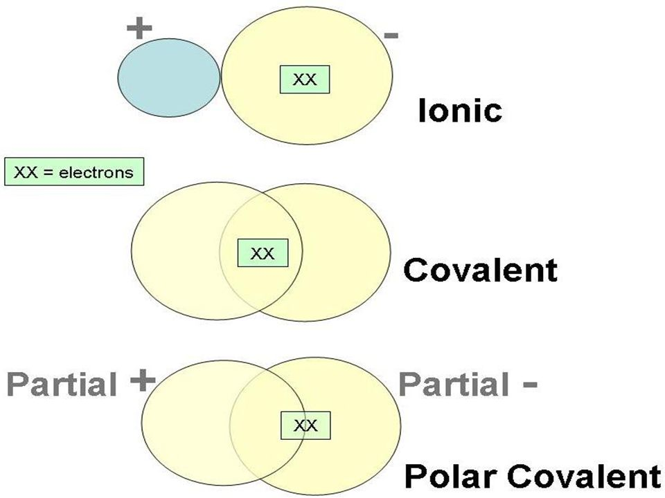 Nonpolar Covalent Bond A Nonpolar Covalent Bond is equal sharing of electrons between two atoms (Cl 2, N 2, O 2 )