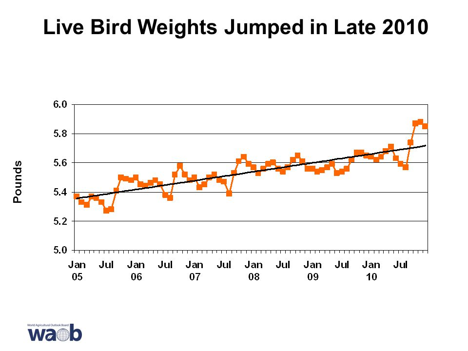 Live Bird Weights Jumped in Late 2010 Pounds