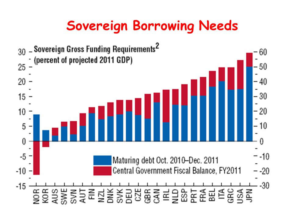 Sovereign Borrowing Needs