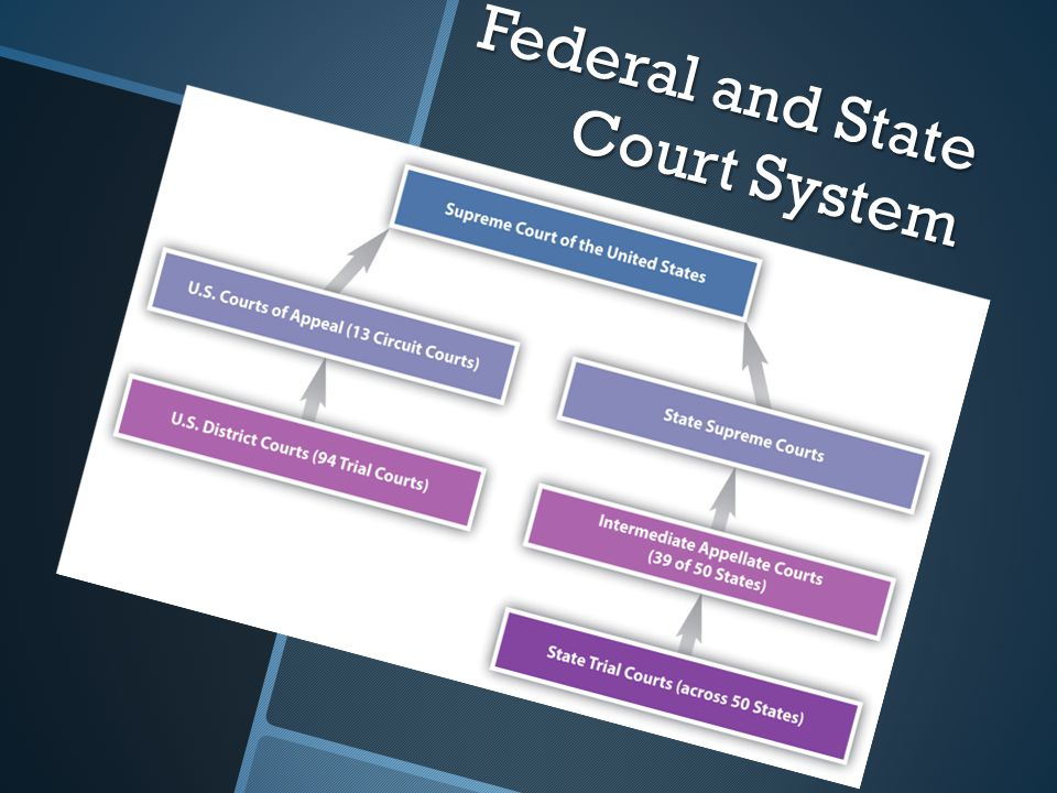 Federal and State Court System