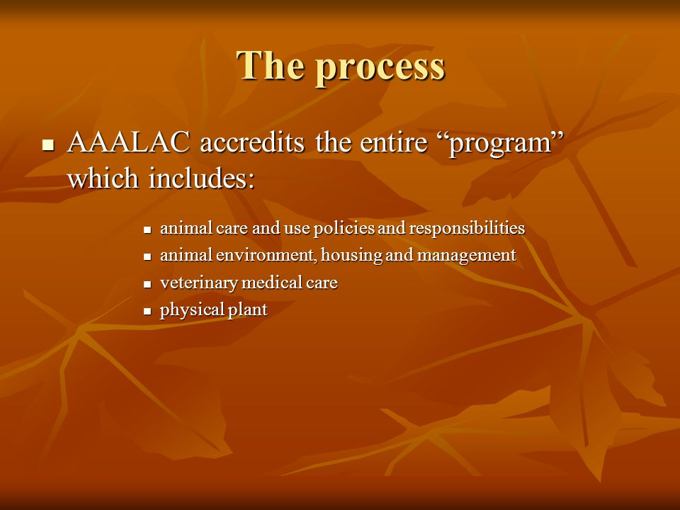 The process AAALAC accredits the entire program which includes: AAALAC accredits the entire program which includes: animal care and use policies and responsibilities animal care and use policies and responsibilities animal environment, housing and management animal environment, housing and management veterinary medical care veterinary medical care physical plant physical plant