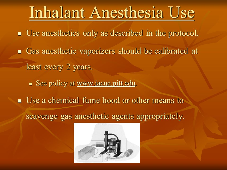 Inhalant Anesthesia Use Use anesthetics only as described in the protocol.