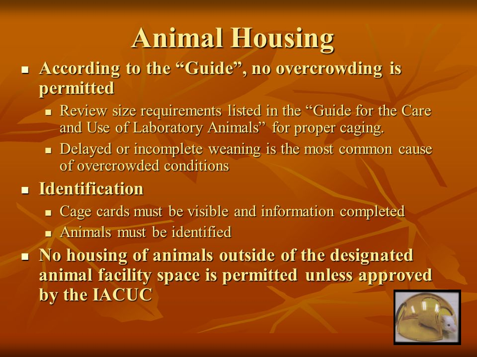 Animal Housing According to the Guide , no overcrowding is permitted According to the Guide , no overcrowding is permitted Review size requirements listed in the Guide for the Care and Use of Laboratory Animals for proper caging.