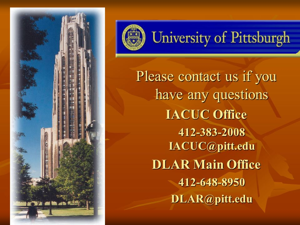 Please contact us if you have any questions IACUC Office DLAR Main Office