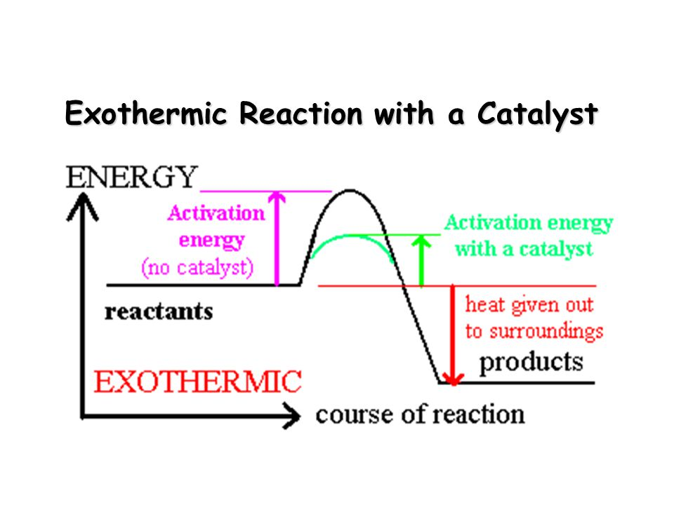 Exothermic Reaction with a Catalyst