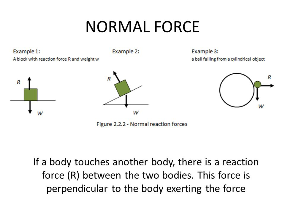 forces force is a vector quantity and is measured in newtons 1n