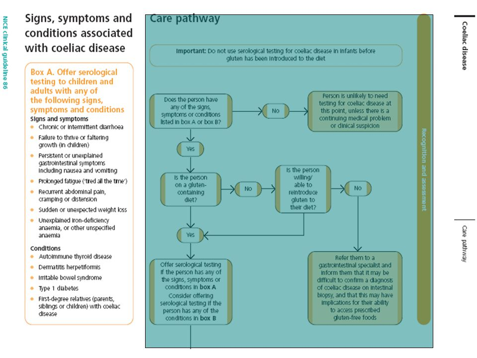 IBS or IBD: a N I C E  Way to Tell - ppt download