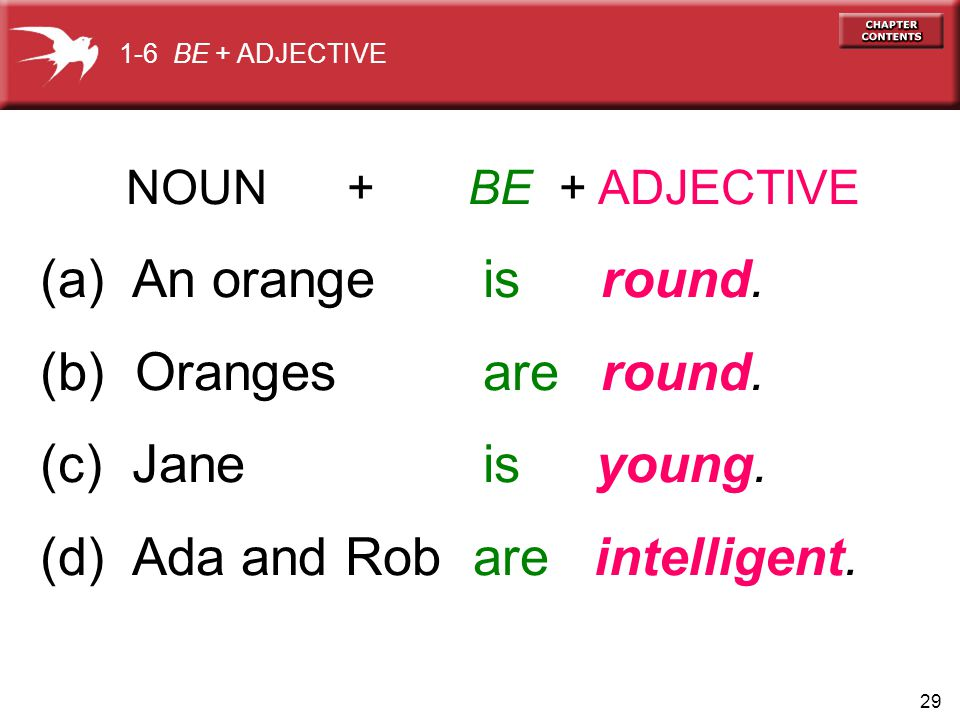 29 NOUN + BE + ADJECTIVE (a) An orange is round. (b) Oranges are round.