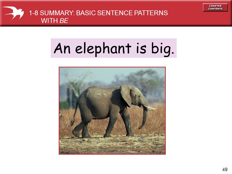 49 An elephant is big. 1-8 SUMMARY: BASIC SENTENCE PATTERNS WITH BE