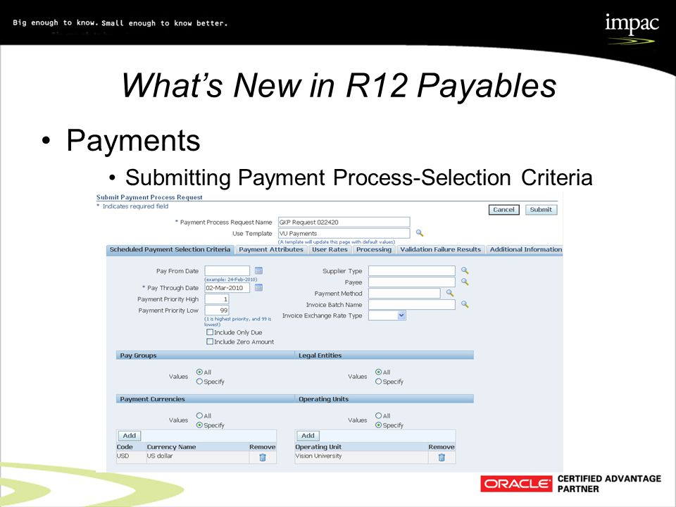 What's New in R12 Payables Payments Submitting Payment Process-Selection Criteria