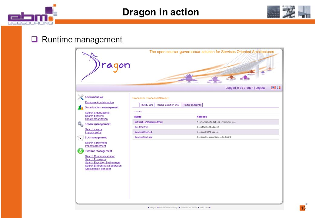 16 Dragon in action  Runtime management