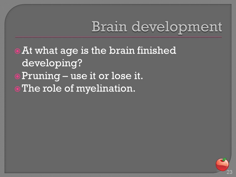  At what age is the brain finished developing.  Pruning – use it or lose it.