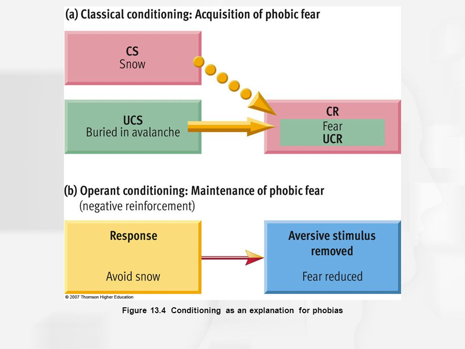 Figure 13.4 Conditioning as an explanation for phobias