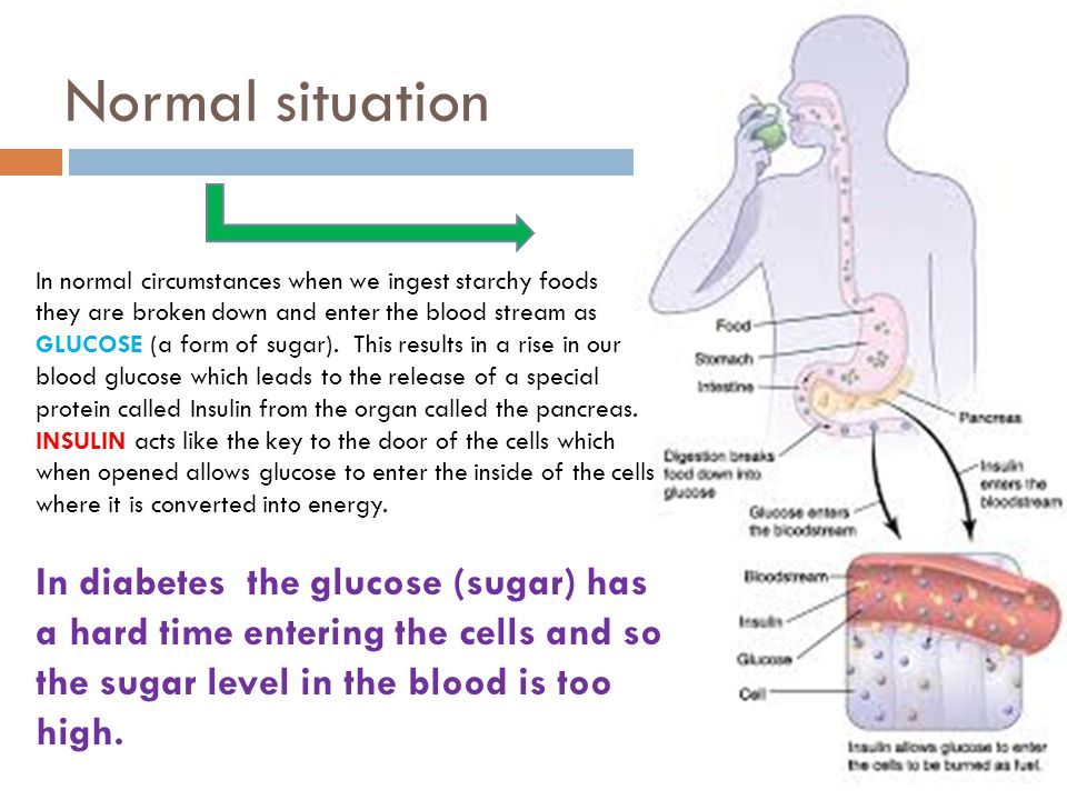 Normal situation In diabetes the glucose (sugar) has a hard time entering the cells and so the sugar level in the blood is too high.