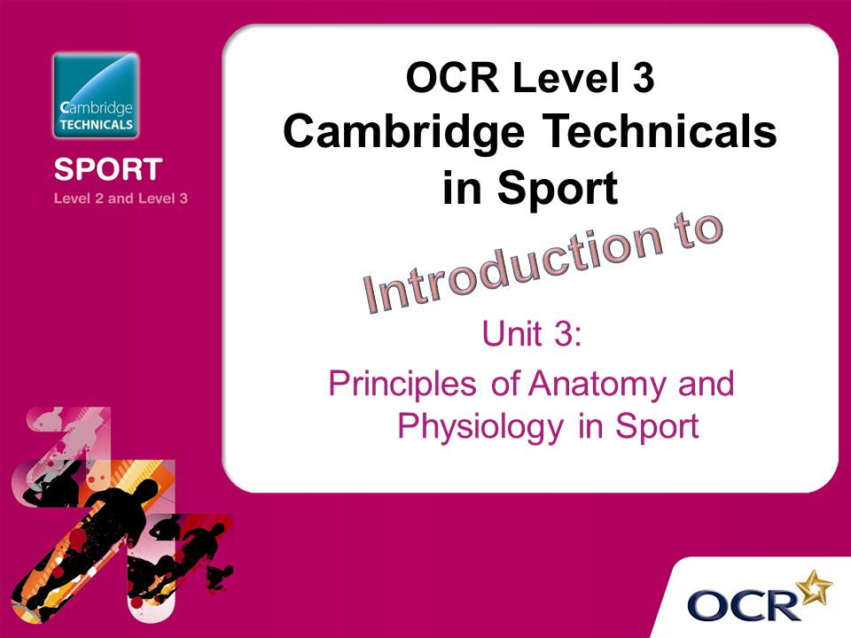 OCR Level 3 Cambridge Technicals in Sport Unit 3: Principles of ...