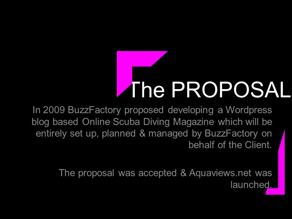 The PROPOSAL In 2009 BuzzFactory proposed developing a Wordpress blog based Online Scuba Diving Magazine which will be entirely set up, planned & managed by BuzzFactory on behalf of the Client.