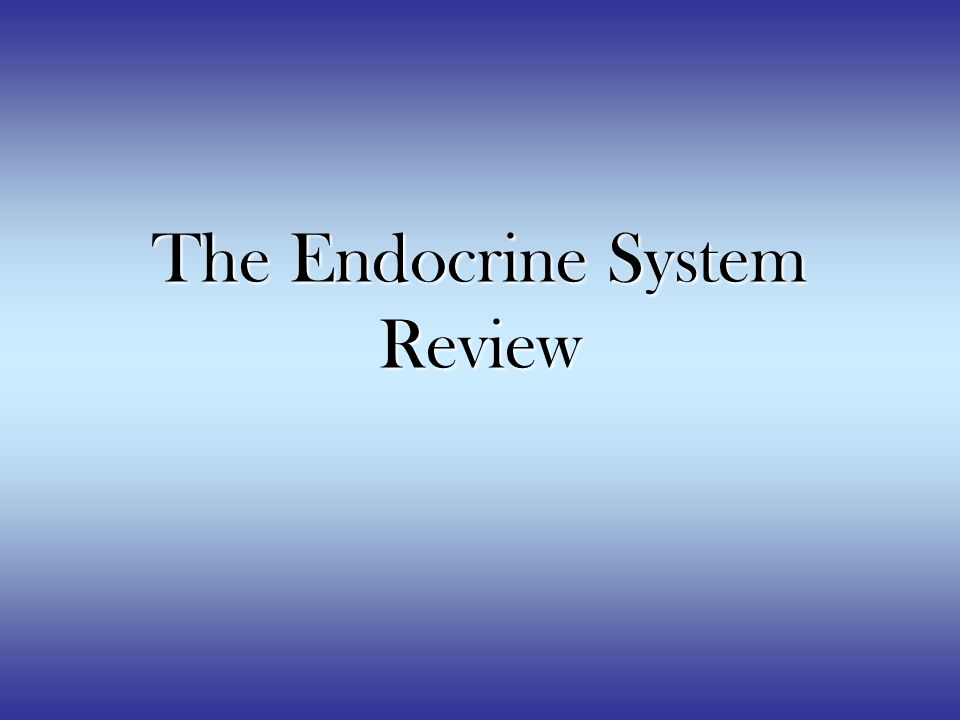 The Endocrine System Review