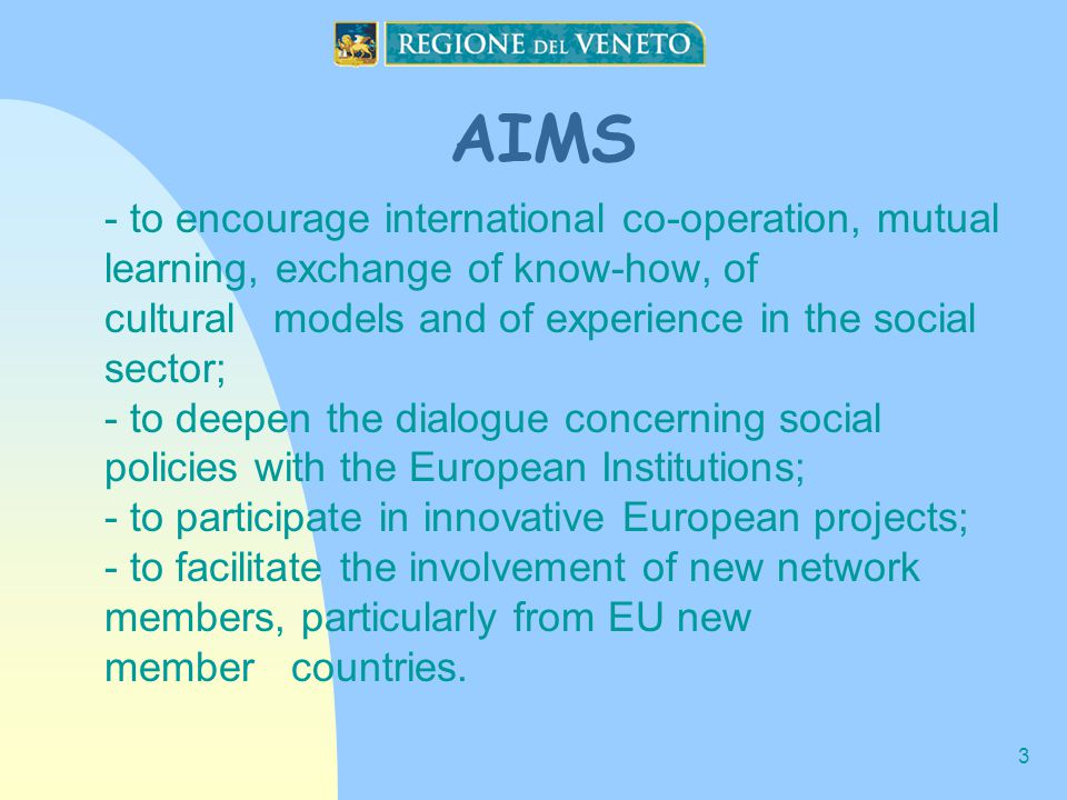 3 AIMS - to encourage international co-operation, mutual learning, exchange of know-how, of cultural models and of experience in the social sector; - to deepen the dialogue concerning social policies with the European Institutions; - to participate in innovative European projects; - to facilitate the involvement of new network members, particularly from EU new member countries.