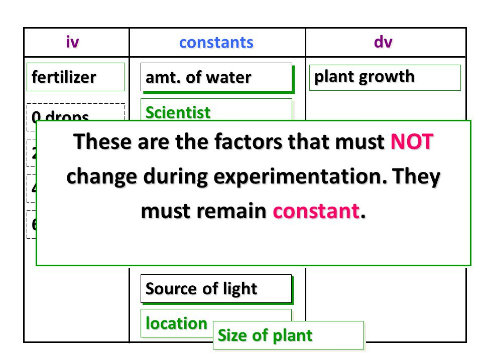iv dv constants plant growth fertilizerfertilizer amt.