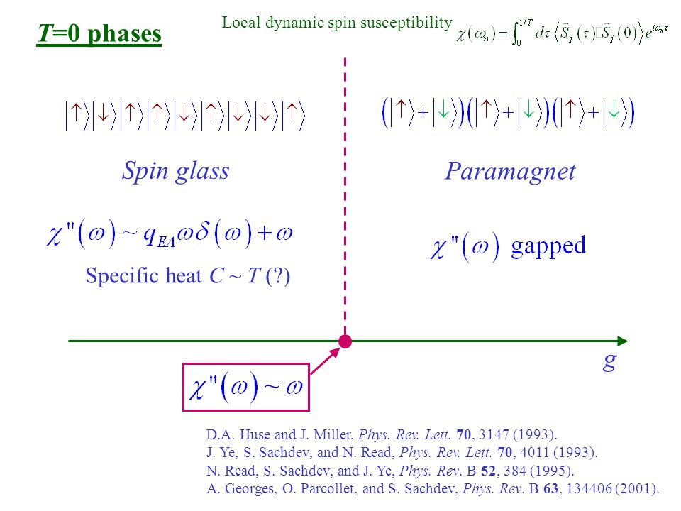 g Spin glass Paramagnet T=0 phases Local dynamic spin susceptibility Specific heat C ~ T ( ) D.A.