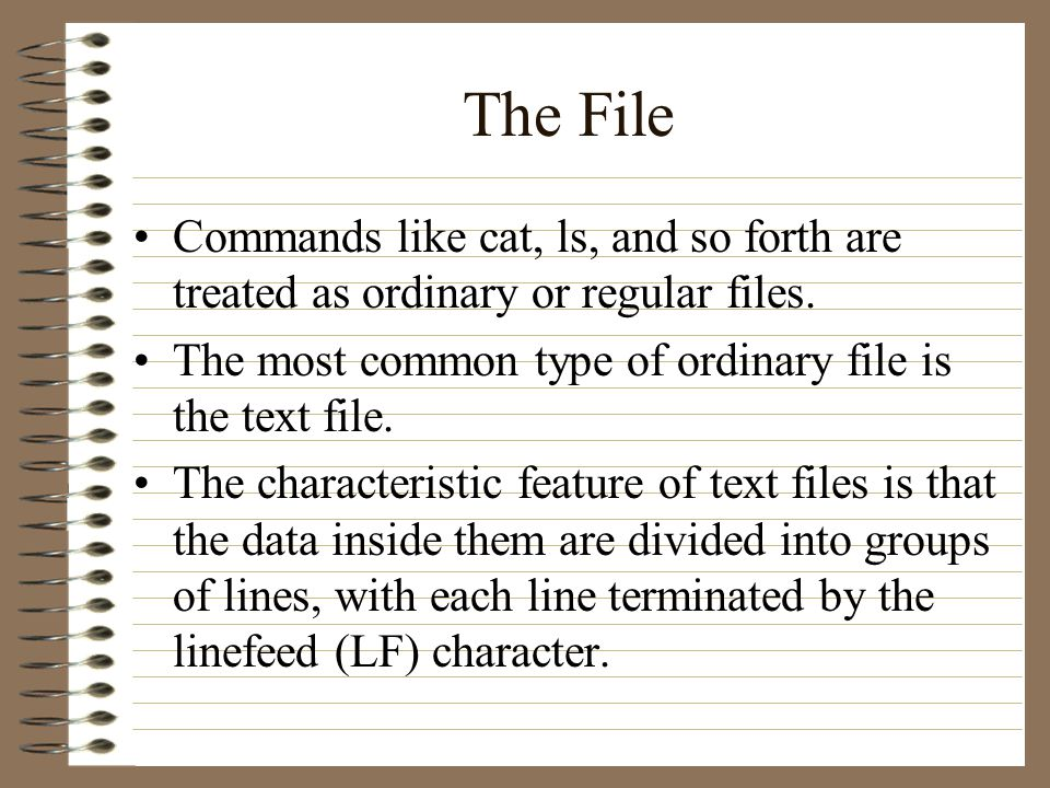 The File Commands like cat, ls, and so forth are treated as ordinary or regular files.