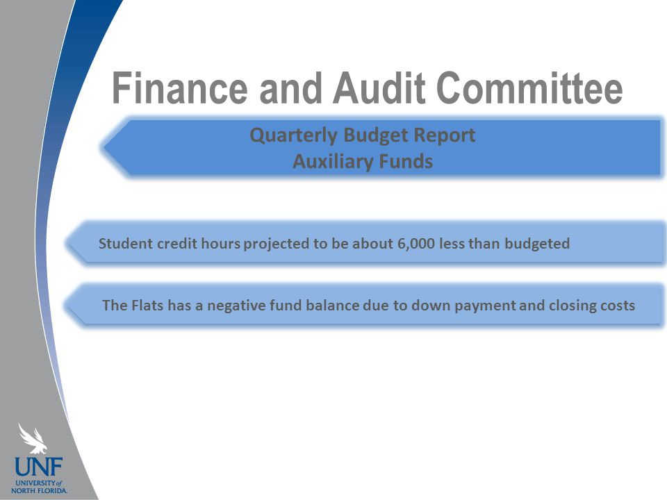 Finance and Audit Committee Quarterly Budget Report Auxiliary Funds Student credit hours projected to be about 6,000 less than budgeted The Flats has a negative fund balance due to down payment and closing costs