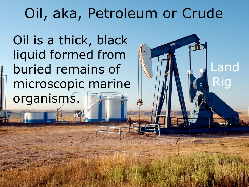 Oil is a thick, black liquid formed from buried remains of microscopic marine organisms.
