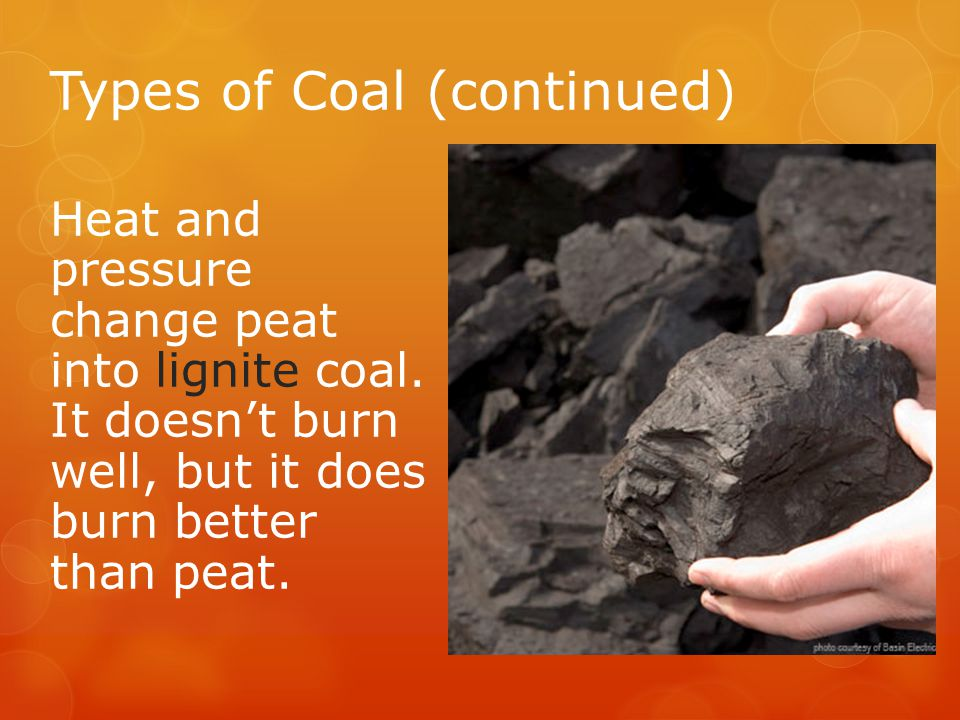 Types of Coal (continued) Heat and pressure change peat into lignite coal.
