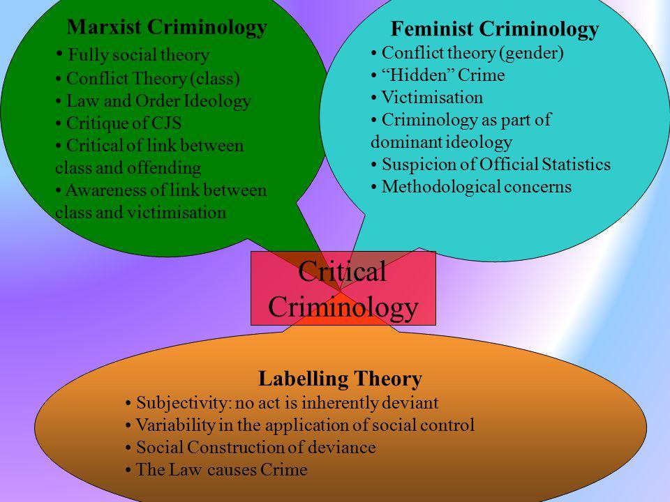 feminist criminology criticisms