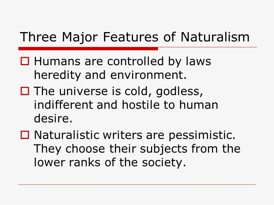 Main Features of American Literature