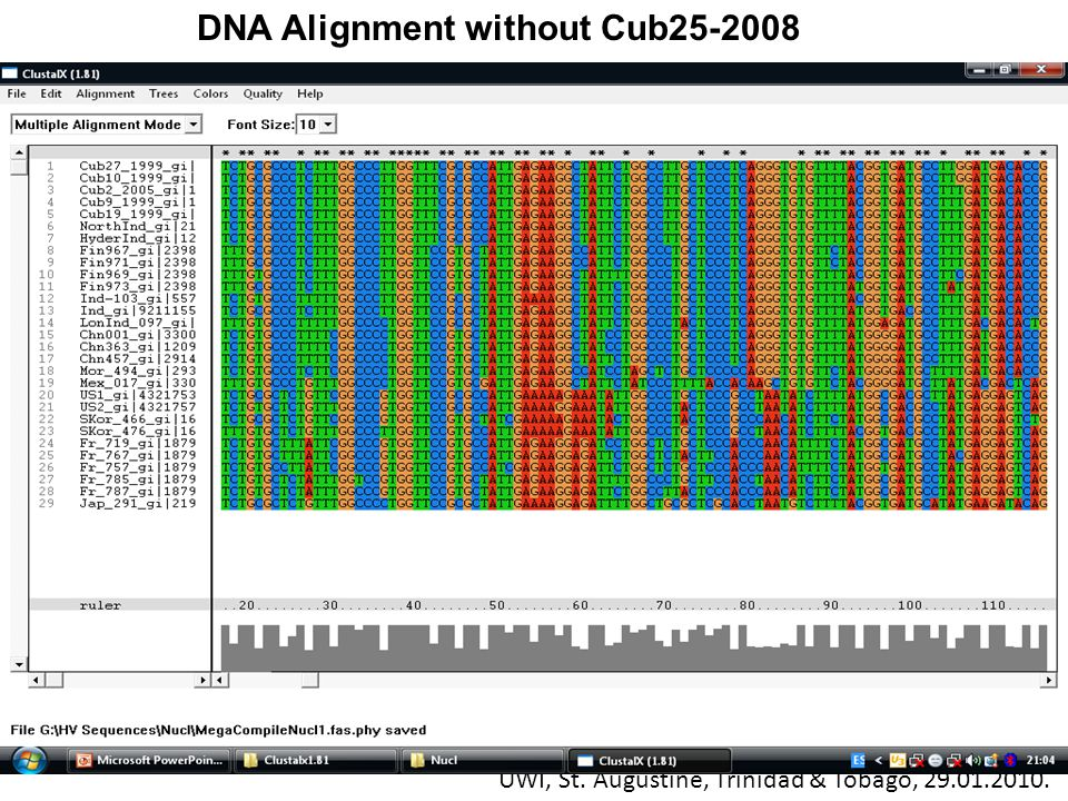 DNA Alignment without Cub