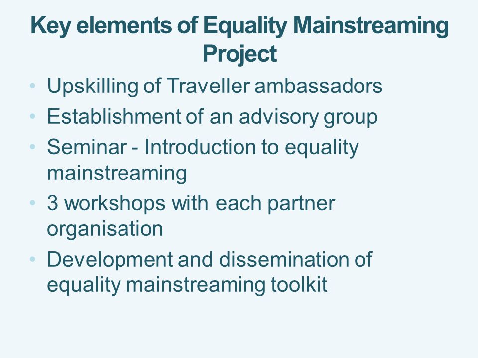 Key elements of Equality Mainstreaming Project Upskilling of Traveller ambassadors Establishment of an advisory group Seminar - Introduction to equality mainstreaming 3 workshops with each partner organisation Development and dissemination of equality mainstreaming toolkit
