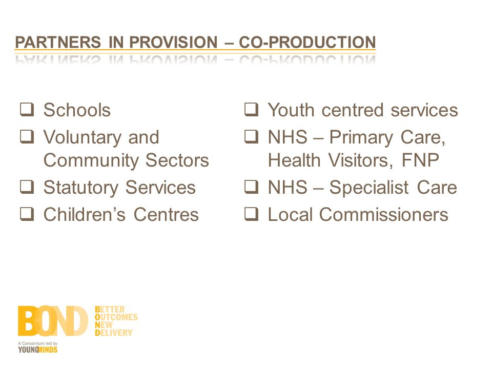  Schools  Voluntary and Community Sectors  Statutory Services  Children's Centres  Youth centred services  NHS – Primary Care, Health Visitors, FNP  NHS – Specialist Care  Local Commissioners
