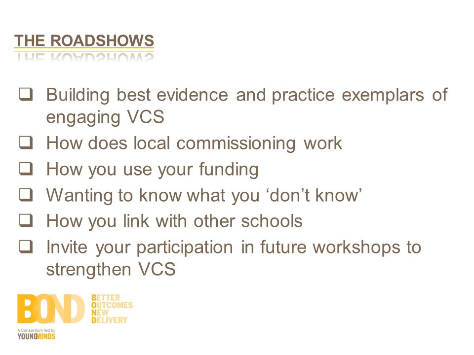  Building best evidence and practice exemplars of engaging VCS  How does local commissioning work  How you use your funding  Wanting to know what you 'don't know'  How you link with other schools  Invite your participation in future workshops to strengthen VCS