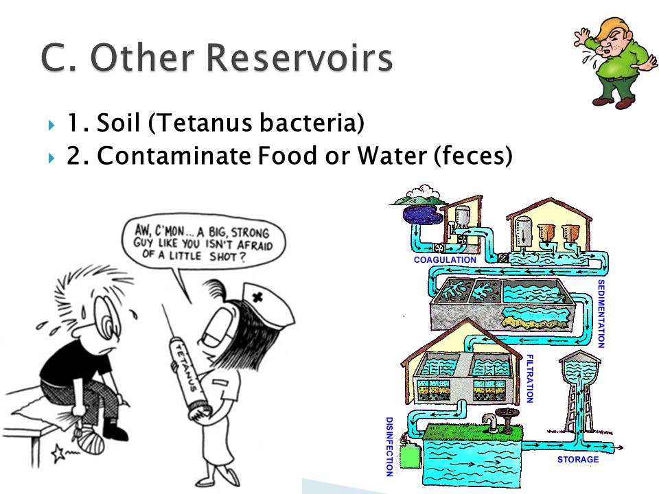  1. Soil (Tetanus bacteria)  2. Contaminate Food or Water (feces)