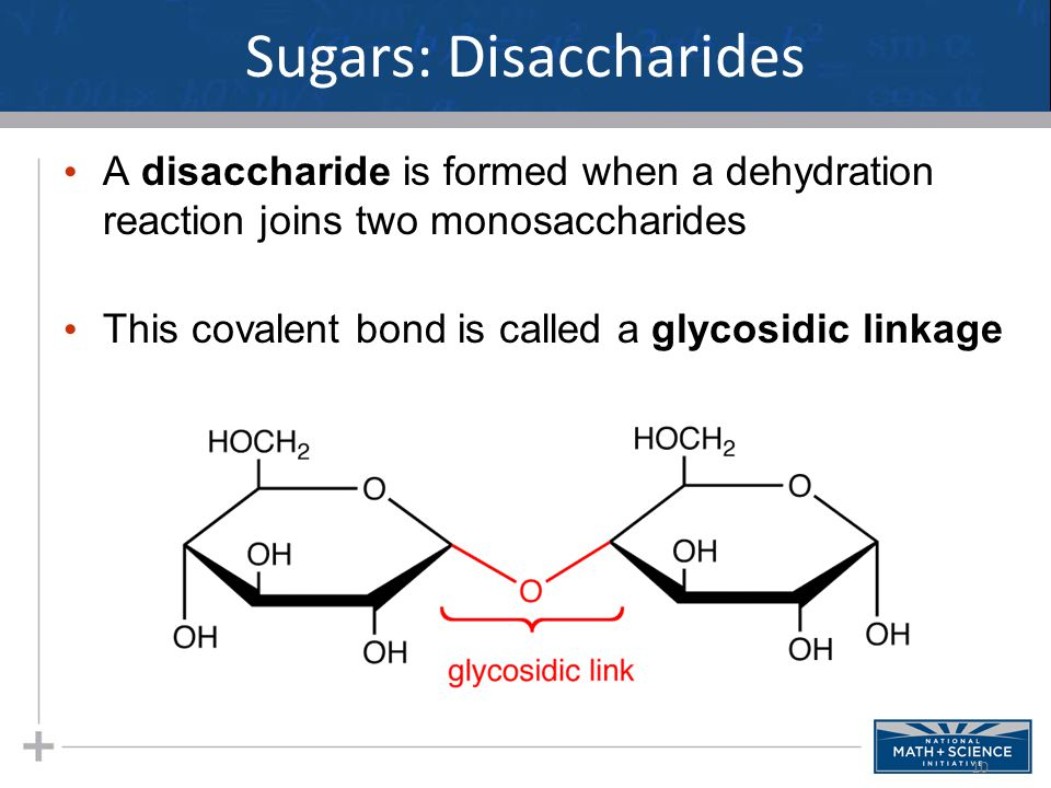 Sugars: Disaccharides A disaccharide is formed when a dehydration reaction joins two monosaccharides This covalent bond is called a glycosidic linkage 10