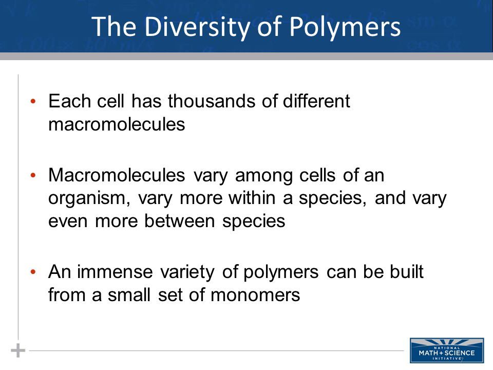 The Diversity of Polymers Each cell has thousands of different macromolecules Macromolecules vary among cells of an organism, vary more within a species, and vary even more between species An immense variety of polymers can be built from a small set of monomers 7