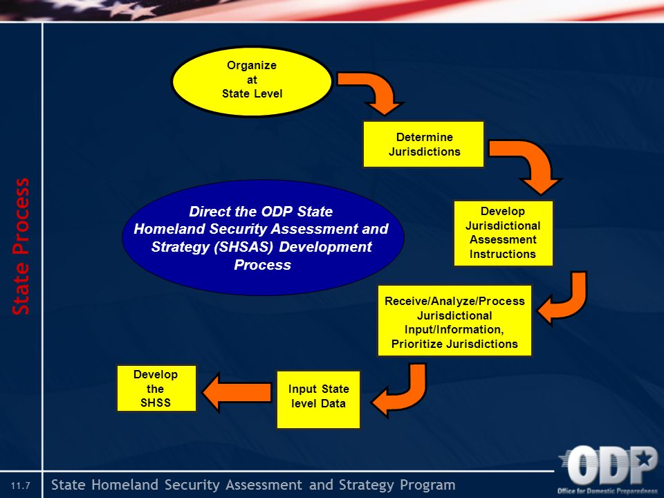 State Homeland Security Assessment and Strategy Program 11.7 State Process Determine Jurisdictions Develop Jurisdictional Assessment Instructions Receive/Analyze/Process Jurisdictional Input/Information, Prioritize Jurisdictions Organize at State Level Input State level Data Develop the SHSS Direct the ODP State Homeland Security Assessment and Strategy (SHSAS) Development Process